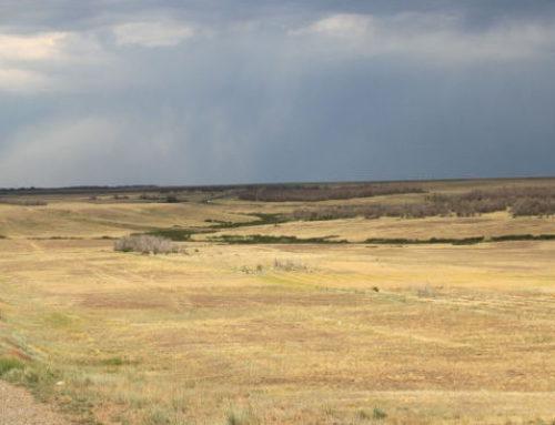Kazachstan, eindeloze steppe, hitte en wasbordwegen.